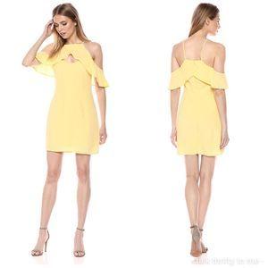 BB DAKOTA | Kaless Ruffle Sleeve Dress